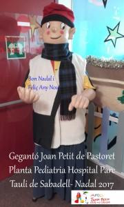 Joan petit